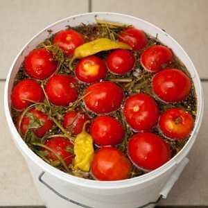 Засолка помидоров в ведре: простые посолы горячим и холодным способом, лучшие рецепты заготовок на зиму