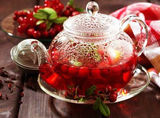 Полезные свойства чая с клюквой и рецепты приготовления