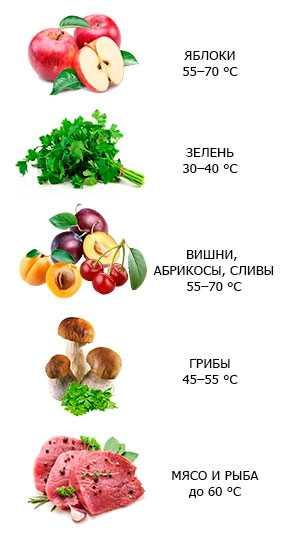 Как правильно сушить плоды шиповника в электросушилке, электрической и газовой духовке, на свежем воздухе на зиму в домашних условиях? когда собирают шиповник для сушки, в каком месяце? сколько можно хранить сушеный шиповник?