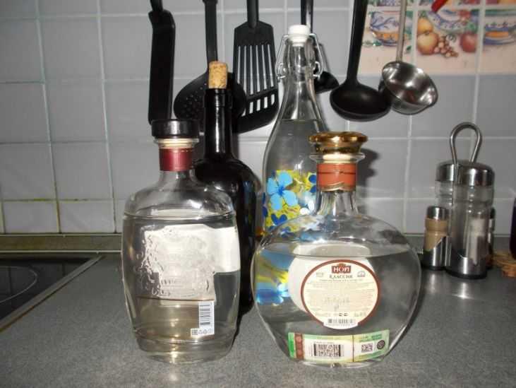 Польза и вред самогона из дыни, классическая технология приготовления, рецепт браги для приготовления дынного самогона. Сроки и условия хранения напитка.