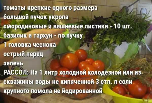 Рецепты помидоров на зиму: как солить в банках, ведре, заготовка томатов в домашних условиях