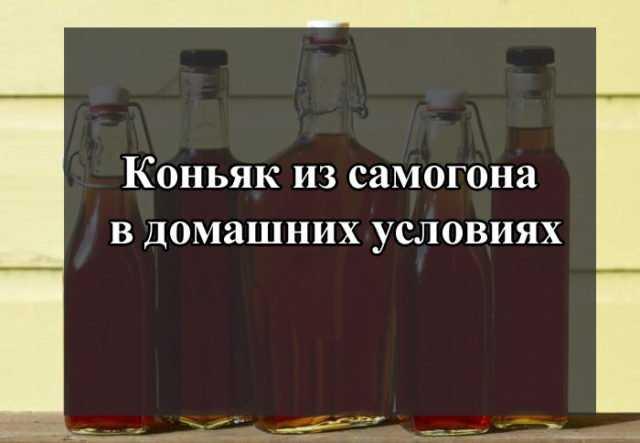Рецепты домашнего коньяка с черносливом: из самогона, из водки, на спирту