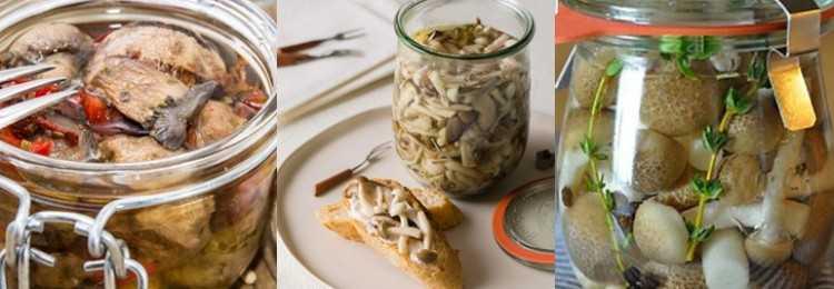 Маринованные белые грузди на зиму: рецепты приготовления в домашних условиях горячим и холодным способом