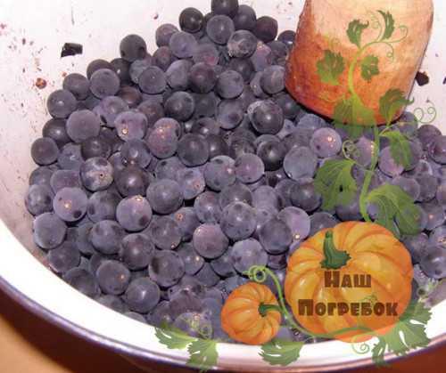 Рецепт приготовления вина из винограда изабелла в домашних условиях