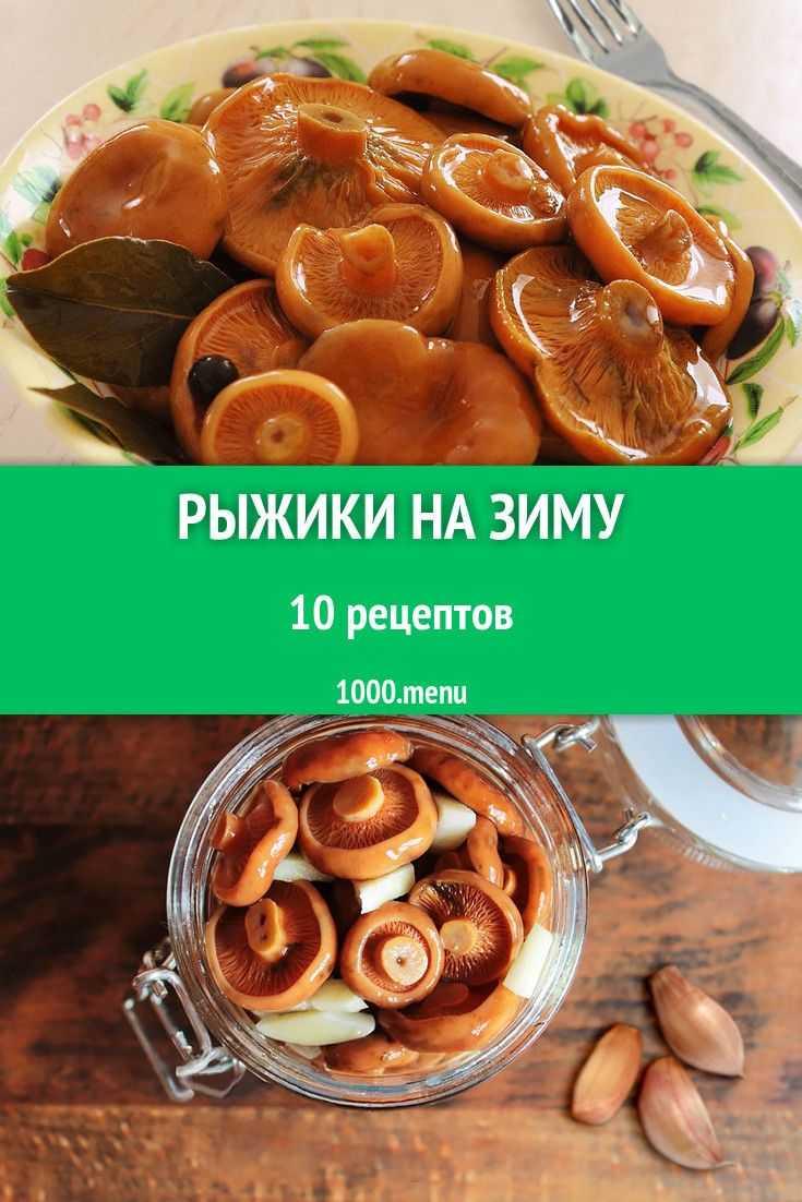 Топ 15 рецептов приготовления рыжиков на зиму горячим и холодным способом, со стерилизацией и без - всё про сады