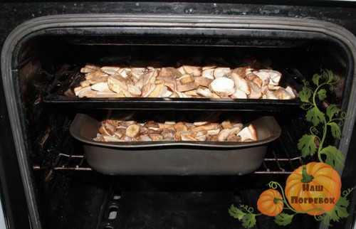 Что сушат в электросушилке: рецепты заготовок на зиму