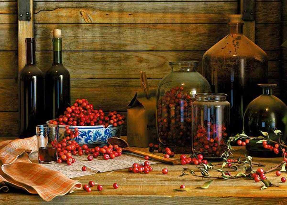 Как самостоятельно приготовить вино из ревеня - da4nikpro