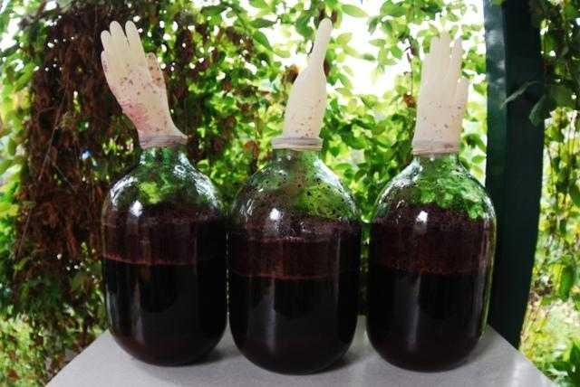 Вино из клюквы в домашних условиях – 4 лучших рецепта