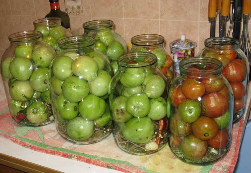 Малосольные помидоры в кастрюле — быстрые рецепты вкусных помидоров