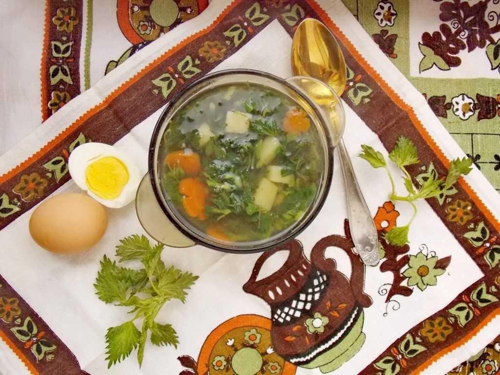 Зеленый суп из крапивы с клецками: рецепт с фото как сварить из молодой крапивы, польза и вред
