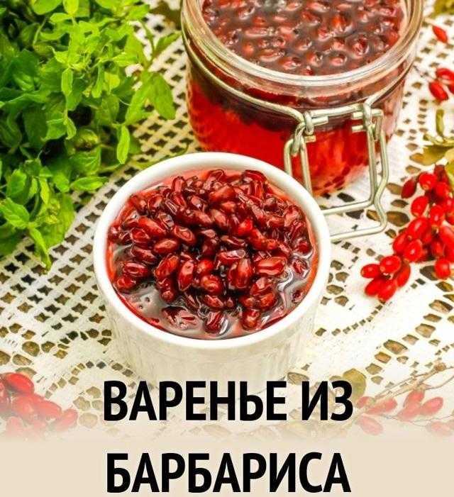 Барбарис сушеный: правила и нюансы сушки для сохранения свойств. Польза и вред ягод, особенности применения при заболеваниях. Рекомендации по сбору и хранению плодов.