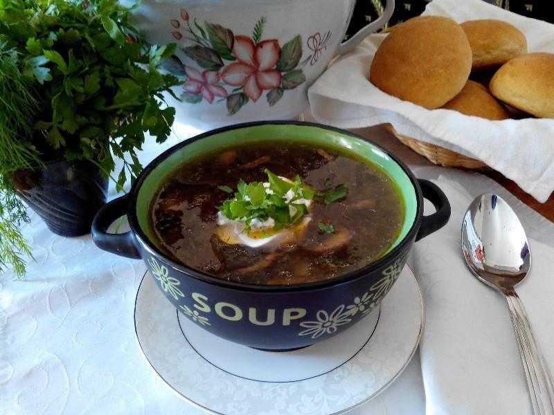 Вкусный суп из шампиньонов с картофелем - описание 4 рецептов