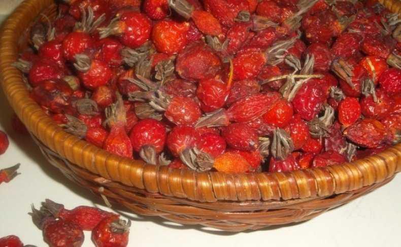 Как сушить боярышник дома в духовке (электродуховке): процесс сушки ягоды в домашних условиях и сколько времени потребуется? русский фермер