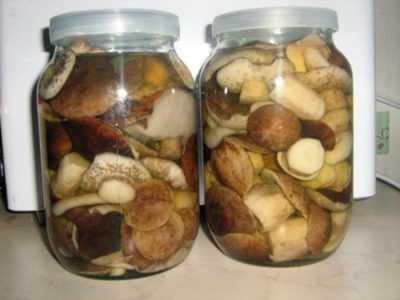 Как и сколько можно хранить замороженные грибы в морозильной камере