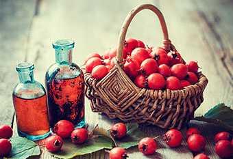 Что делать с боярышником сушеным. сушёный боярышник – кладезь витаминов