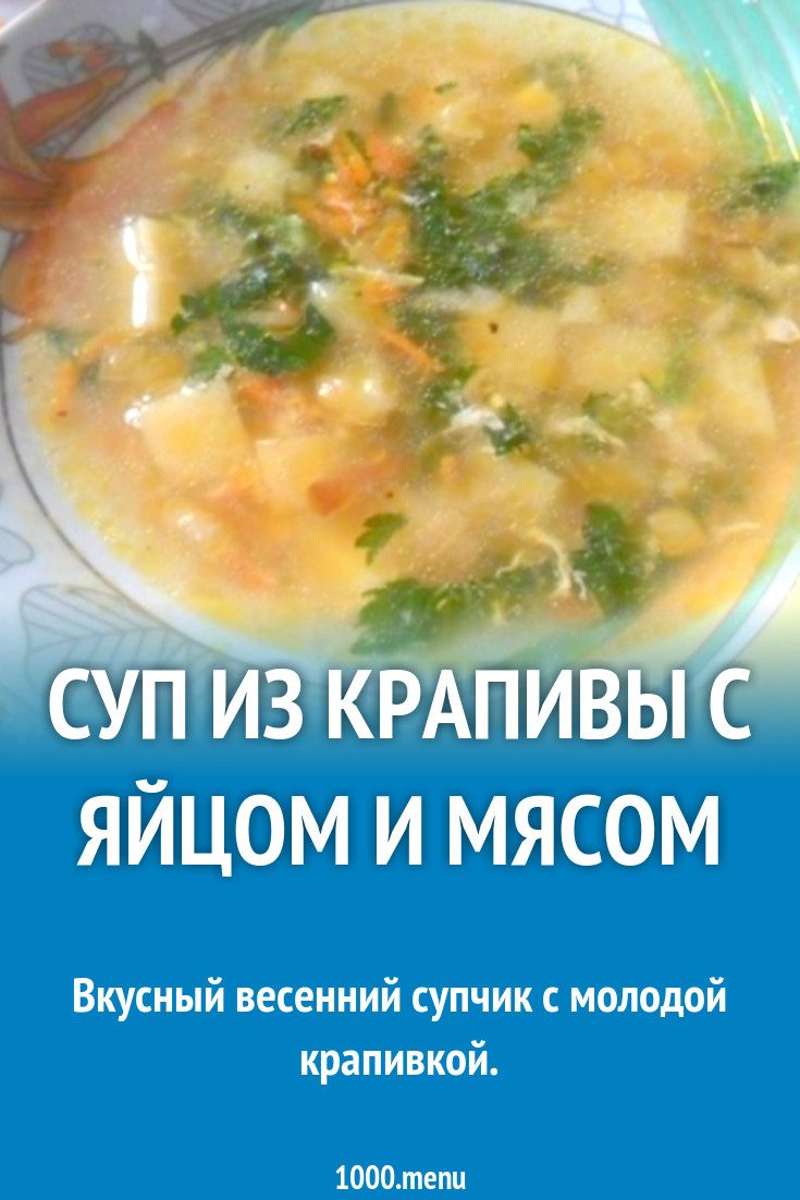 Суп из крапивы – 7 рецептов как варить крапивный суп