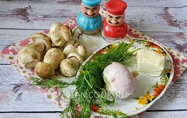Как правильно приготовить соус из белых грибов: 7 пошаговых рецептов с фото. Советы и рекомендации по приготовлению. Калорийность соуса из белых грибов.