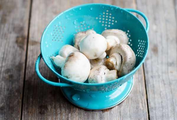 Как правильно заморозить белые грибы на зиму, лучшие рецепты приготовления