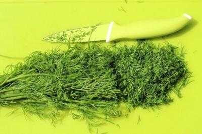 Как засолить зелень на зиму: рецепты в банке. Какая зелень подойдет для засолки.