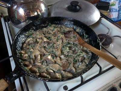 Маслята жареные с луком: как правильно и вкусно пожарить, пошаговый рецепт с фото