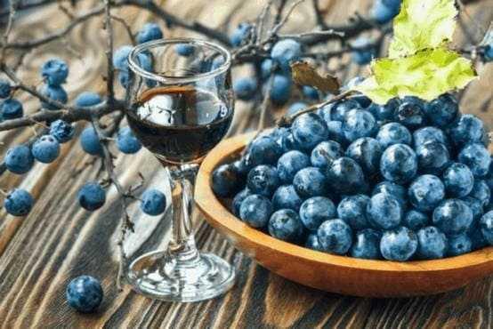 Вино из терна в домашних условиях — простой рецепт приготовления