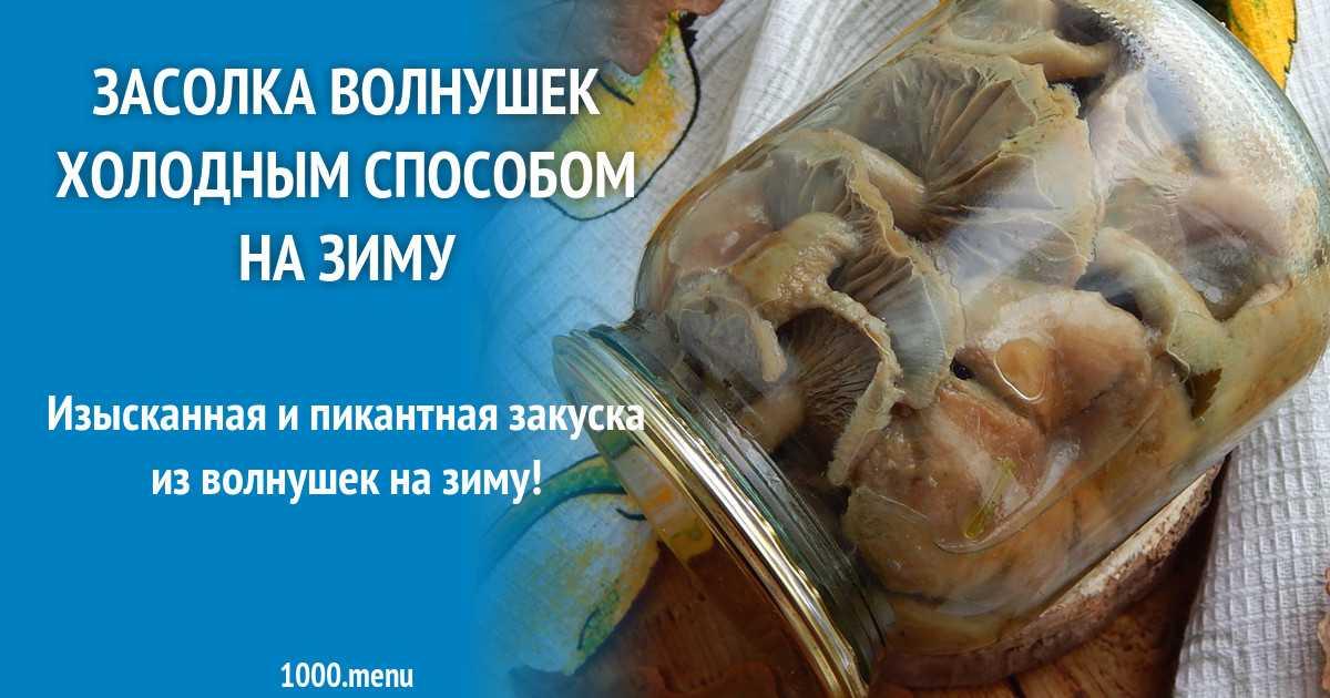 Как солить волнушки в домашних условиях холодным способом и горячим: рецепты пошагово