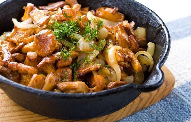 Курица с грибами в сливочном соусе: 67 домашних рецептов