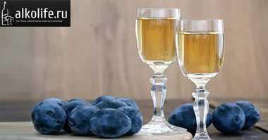 Сливовица: польза, марки напитка, рецепт приготовления сливовицы в домашних условиях