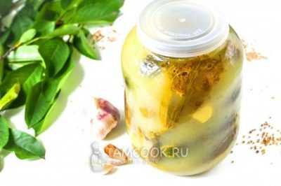 Капуста с аспирином на зиму в 3х литровой банке: маринованная холодным и горячим способом под железные крышки, вкусная засолка с уксусом, квашеная в рассоле