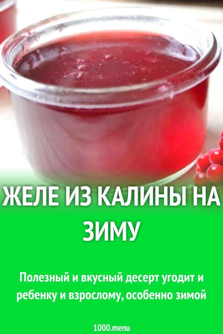 Калина с сахаром на зиму без варки: золотой рецепт приготовления, как хранить и правильно принимать