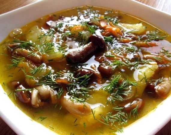 Рецепты грибного супа из замороженных опят: как сварить, секреты приготовления