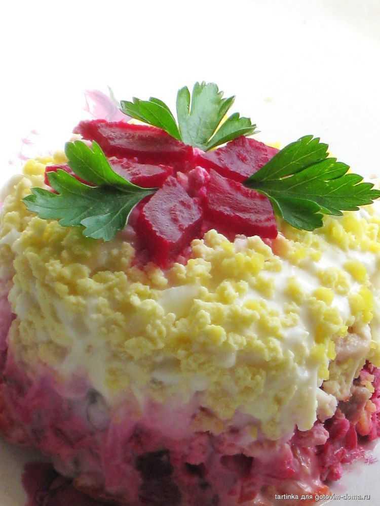 Кремлевская диета: рецепты блюд с баллами для первого и второго этапов, меню на каждый день, включая супы, десерты и салаты   диеты и рецепты