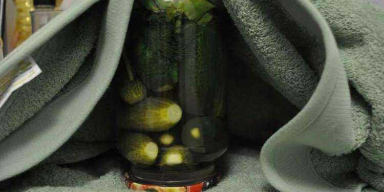 Хрустящие маринованные огурцы на зиму: вкусные и простые рецепты