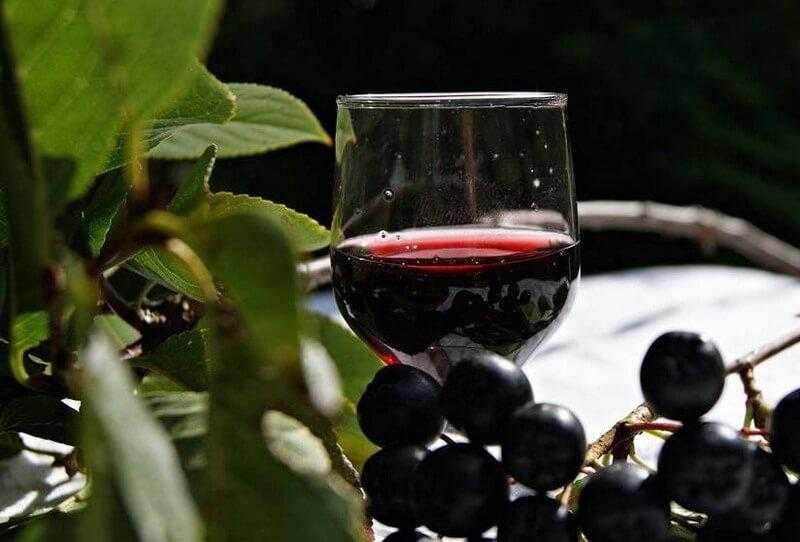 Домашняя настойка из черноплодной рябины: на водке, самогоне, спирте. Правила приготовления и лучшие рецепты с вишневыми листьями, лимоном, пряностями.