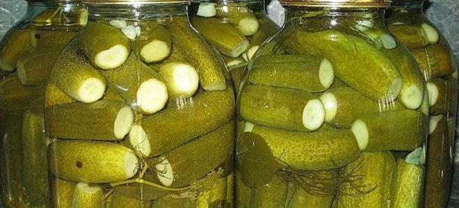 Огурцы на зиму с аспирином: для чего кладут в заготовки. Рецепты с горчицей, сладким болгарским перцем, уксусом. Правила хранения маринованных огурцов.