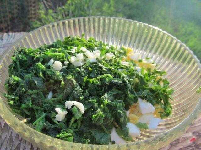 20 салатов из простых продуктов на скорую руку