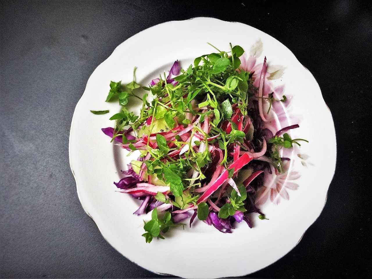 Салат из капусты с болгарским перцем и морковью пп рецепт с фото пошагово - 1000.menu