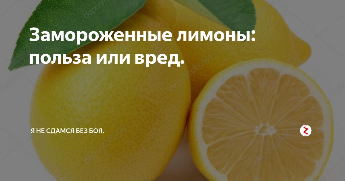 Как хранить лимоны в холодильнике и в комнатных условиях