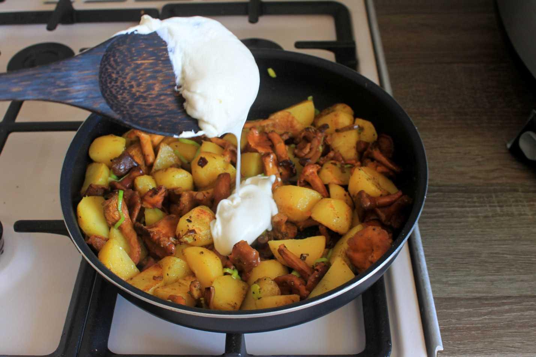 Сливочно грибной соус из лисичек. лисички в сметане - рецепты приготовления с мясом, картошкой и сыром на сковороде или в духовке