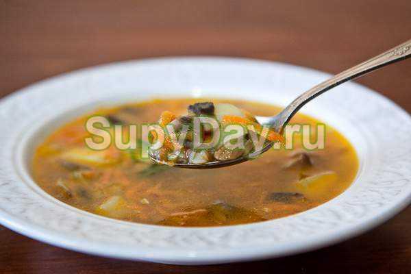 Грибной суп из сушеных грибов с перловкой - невероятно вкусный суп с ароматом сказочного, осеннего леса: рецепт с фото и видео