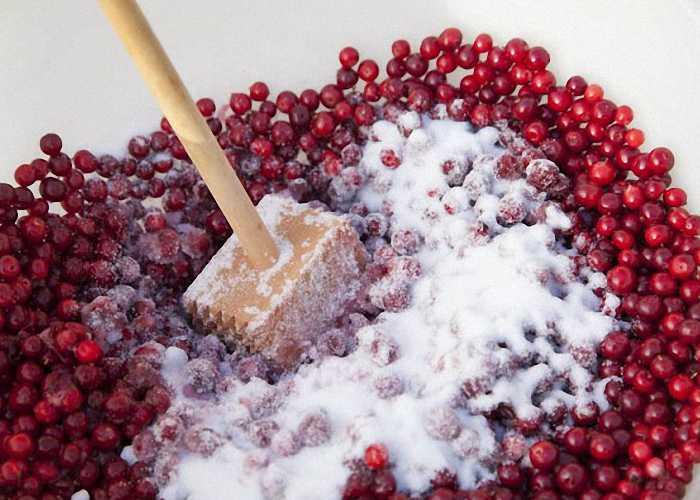 Настойка на бруснике: 6 рецептов в домашних условиях - продукталко