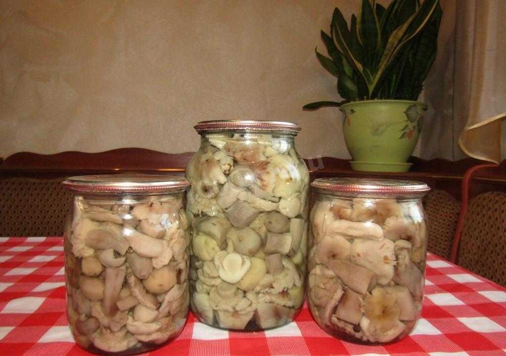 Маринованные свинушки: рецепт на зиму с фото, пошаговое приготовление