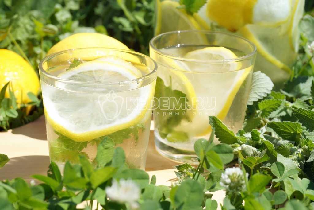 Лимонад мохито в домашних условиях - пошаговый рецепт