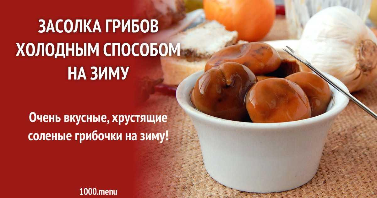 Как вкусно засолить, замариновать грибы волнушки в банках горячим и холодным способом на зиму: секреты, советы, лучшие рецепты. как чистить, сколько вымачивать и варить волнушки перед засолкой до гото