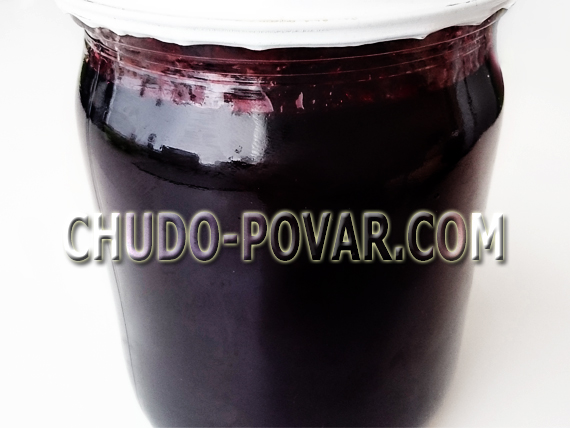 Как сушить черноплодку в духовке. как заготовить ягоды для сушки. как правильно сушить в духовке ягоды черноплодной рябины