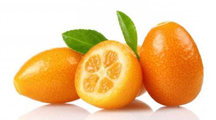 Кумкват – что это за фрукт, польза и вред и как его едят
