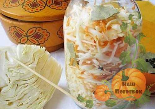 Квашеная капуста быстрого приготовления с уксусом: лучшие рецепты приготовления.