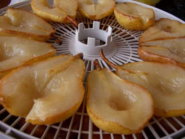Как хранить сушеные яблоки в домашних условиях, чтобы не завелась моль