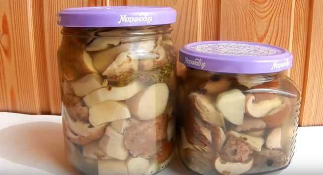 Маринованные грибы – моя подборка лучших рецептов