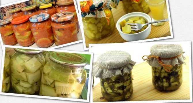 Аджика из кабачков на зиму с томатной пастой: рецепт пальчики оближешь с болгарским и острым перцем. аджика с кабачками и яблоками